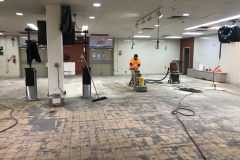 Flooring-Removal-and-Flooring-Prep